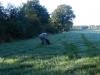 solms-coesfeld-28-9-2013-006